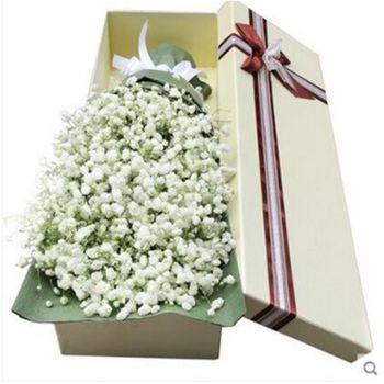 【呼和浩特】大自然鲜花-美团