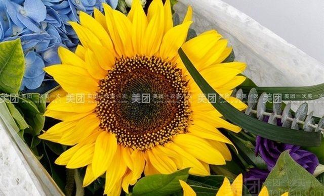 :长沙今日团购:【绿韵花艺】3枝向日葵花盒