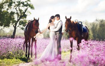 【上海】上海米兰FASHION婚纱摄影-美团