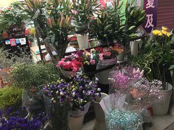 花开心鲜花店(金蝴蝶花卉)