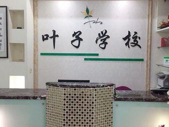 叶子职业培训学校