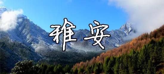 宝兴县熊猫古城 宝兴东拉山大峡谷 芦山飞仙关旅游景区 雅安宝兴蜂拥