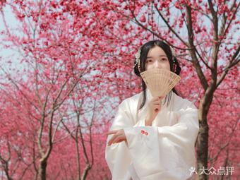新都沐阳庭樱花节