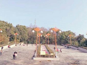 仙楼山森林公园
