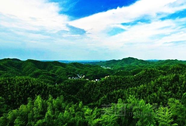 【桃花江竹海风景区】桃江县连锁大全,点击查看全部1