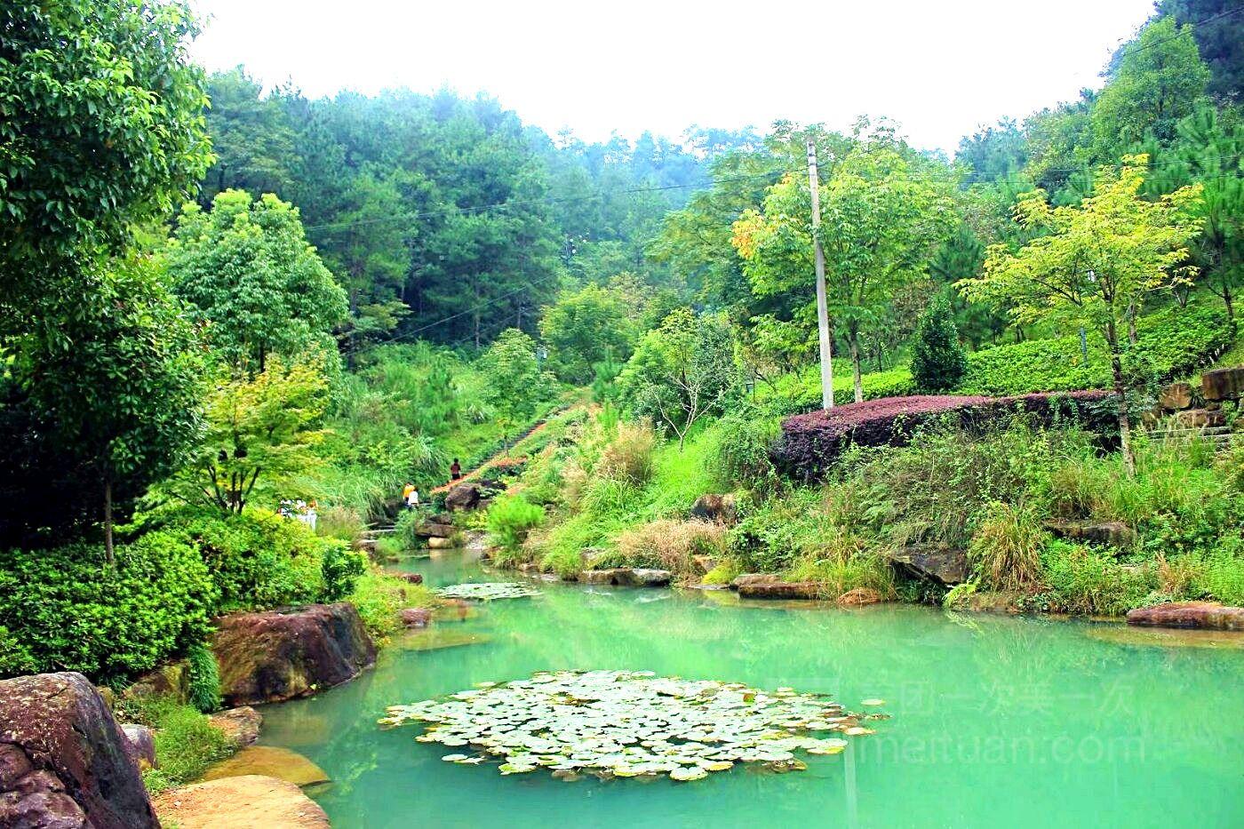 凤凰山森林公园