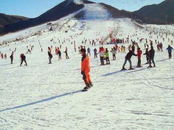 翠柳岛滑雪场