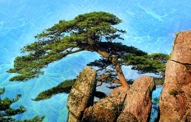 有山有水有树的风景画简笔画