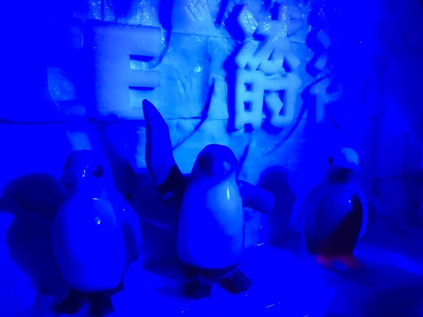 野生动物园 盘龙翠谷极地冰雪大世界 当日融合菜套餐  固安funny
