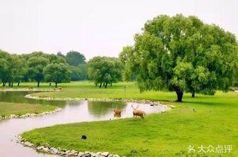 北京麋鹿生态实验中心