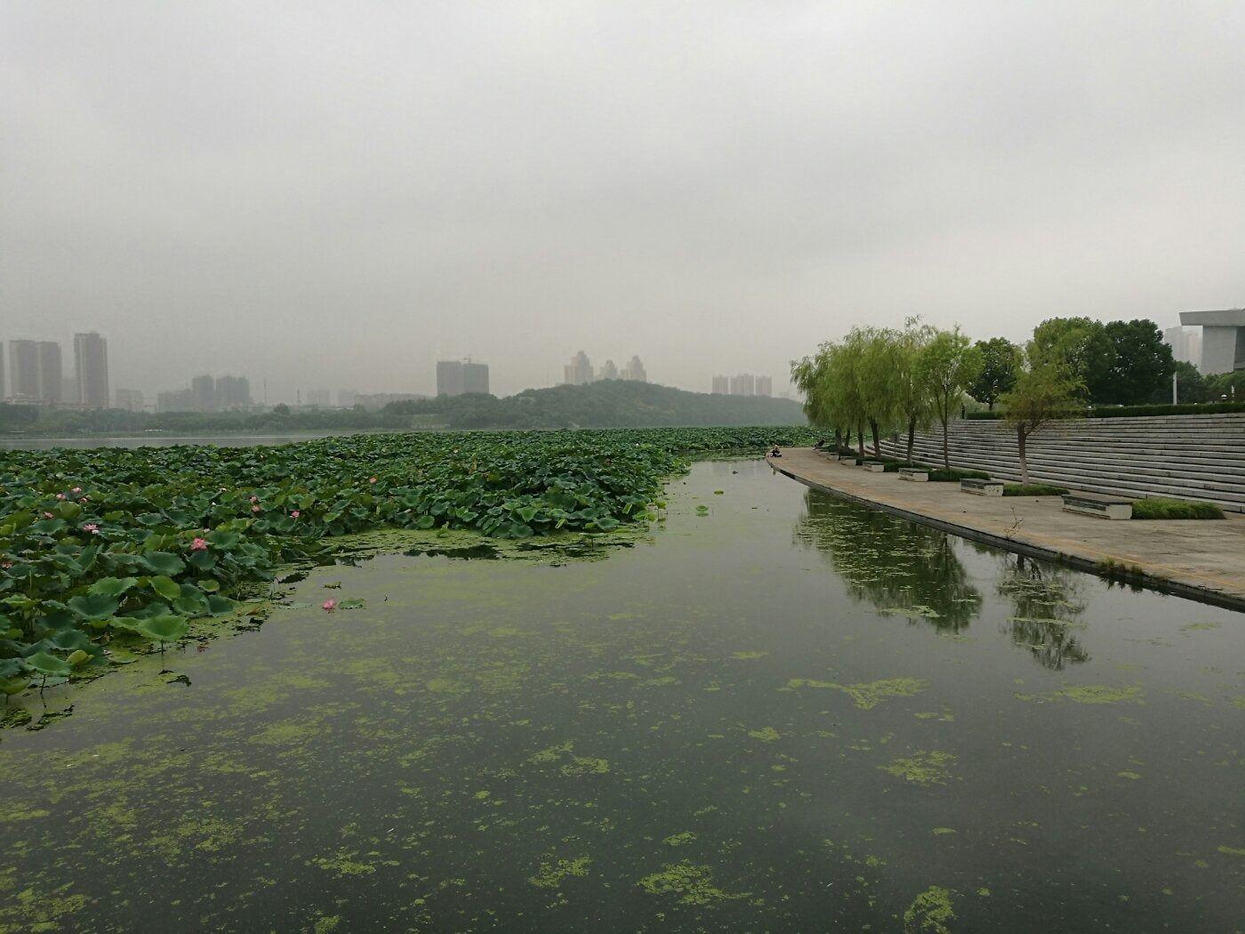 【武汉月湖风景区】团购,地址,电话,附近门店,全部