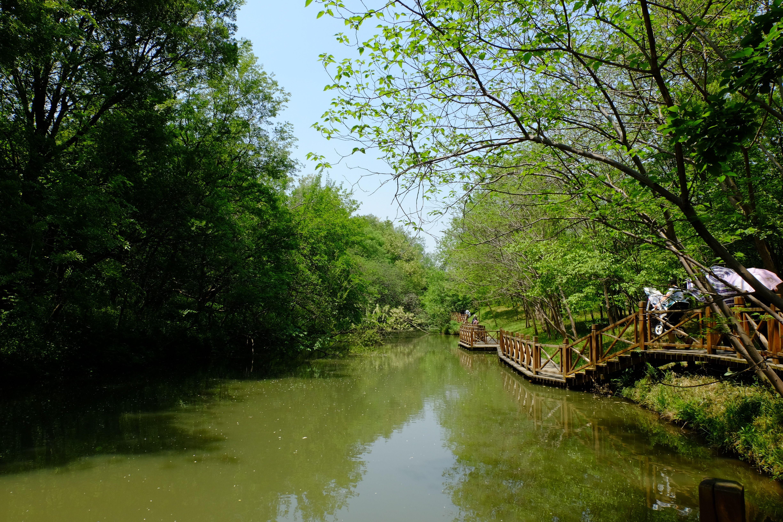 茱萸湾风景区