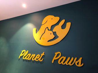planet paws宠物生活体验馆