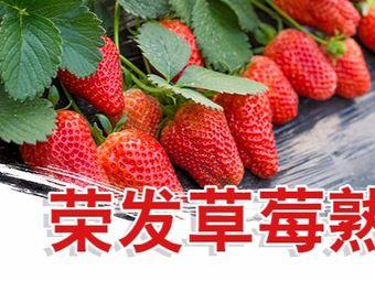荣发农业观光园