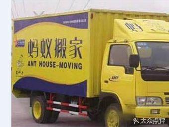 正规蚂蚁搬家