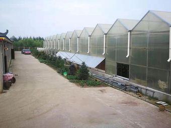 开阳湖采摘园