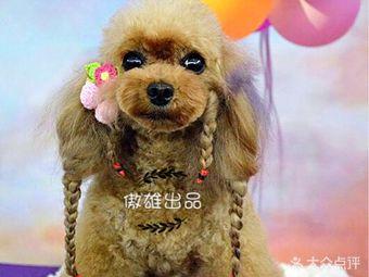 Boy&Girl's宠物美容寄养会所(傲雄总店)(傲雄总店)