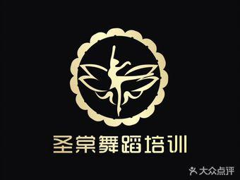 圣棠舞蹈培训艺术中心