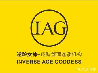 IAG逆龄女神皮肤管理连锁机构(大北关街店)