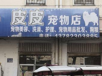 皮皮宠物店