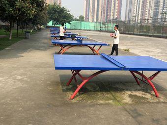 乒乓球场(银杏学院店)