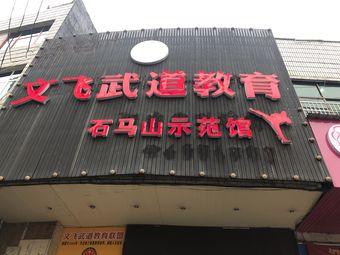 文飞武道教育联盟(石马山馆)