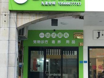 益安动物医院(九龙分所店)