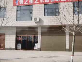 舞之星艺术培训中心