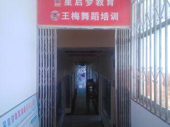 王梅舞蹈学校