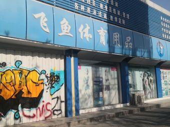 飞鱼游泳俱乐部