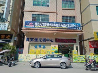 香港天才密码全脑教育育英堡开发训练中心