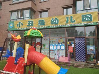 小丑鱼幼儿园