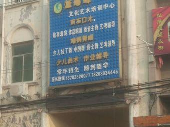 蓝海豚文化艺术培训中心