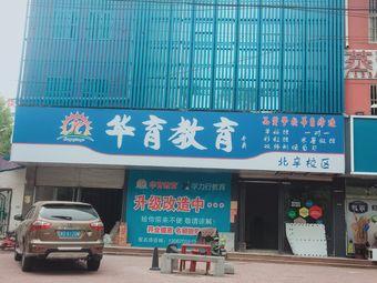 华育教育(北辛校区)