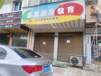 魔耳国际教育(柳清路店)