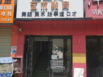 清大SSK艺术教育