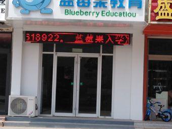 蓝莓果教育(新城市花园店)
