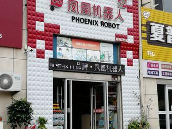 凤凰机器人(郯城校区)