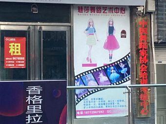 中国舞蹈家协会培训考级中心