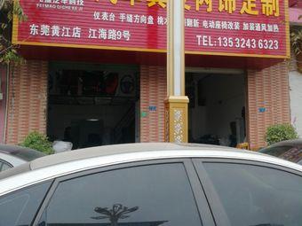 飞猫汽车科技(东莞黄江店)