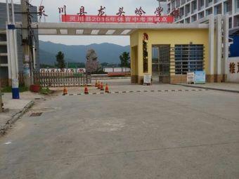 灵川县龙头岭学校