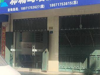 武汉邾城驾培(第十六服务部)