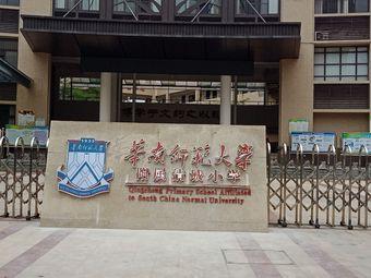 华南师范大学附属清城小学