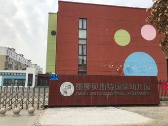 桃柳贝斯特国际幼儿园