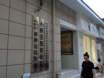 小棋圣学校