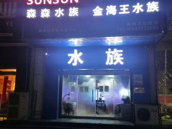 森森水族(涿州店)