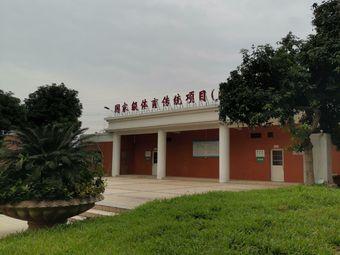体育传统项目(游泳)学校
