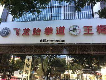 飞龙跆拳道(世博店)