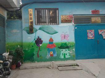 金苗幼儿园(菜市街)