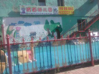 育苗幼儿园